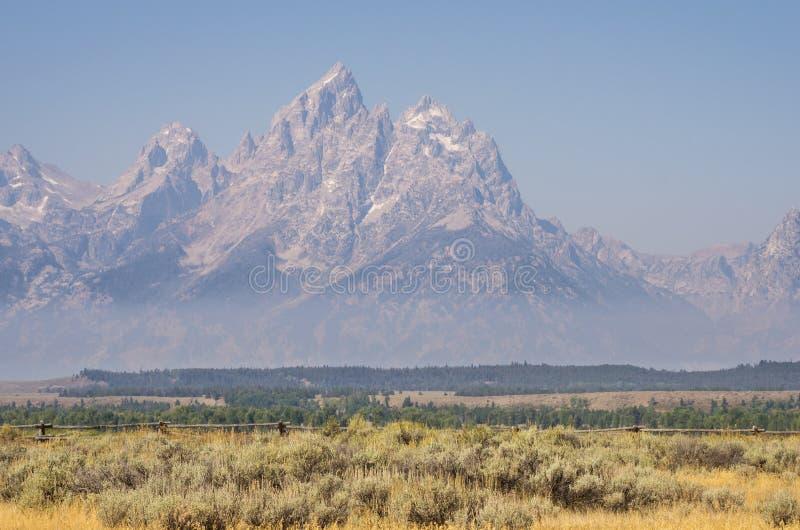 Storslagen Teton resning ovanför mist, fält och träd royaltyfria bilder