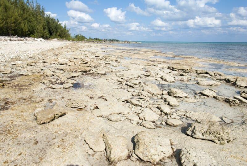 Storslagna Bahama Rocky Beach arkivfoton