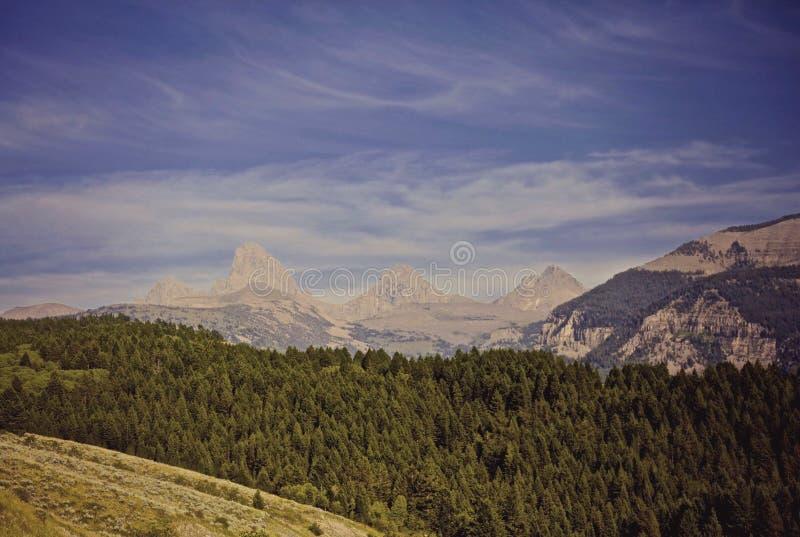 Storslagna Tetons berg Wyoming fotografering för bildbyråer