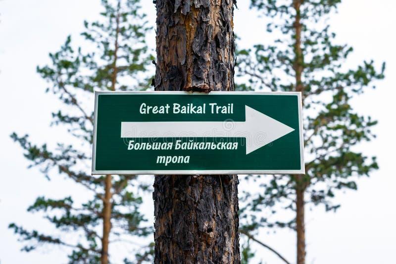 Stort Baikal slingatecken royaltyfri bild