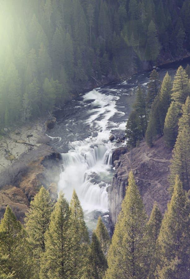 Stort flodvattenfallklipp till och med träd i träna royaltyfri fotografi