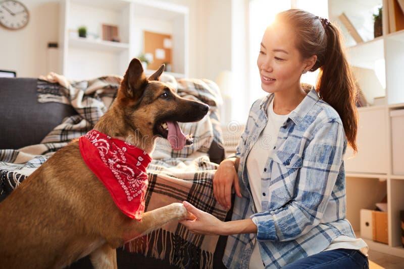Stort ge sig för hund tafsar fotografering för bildbyråer