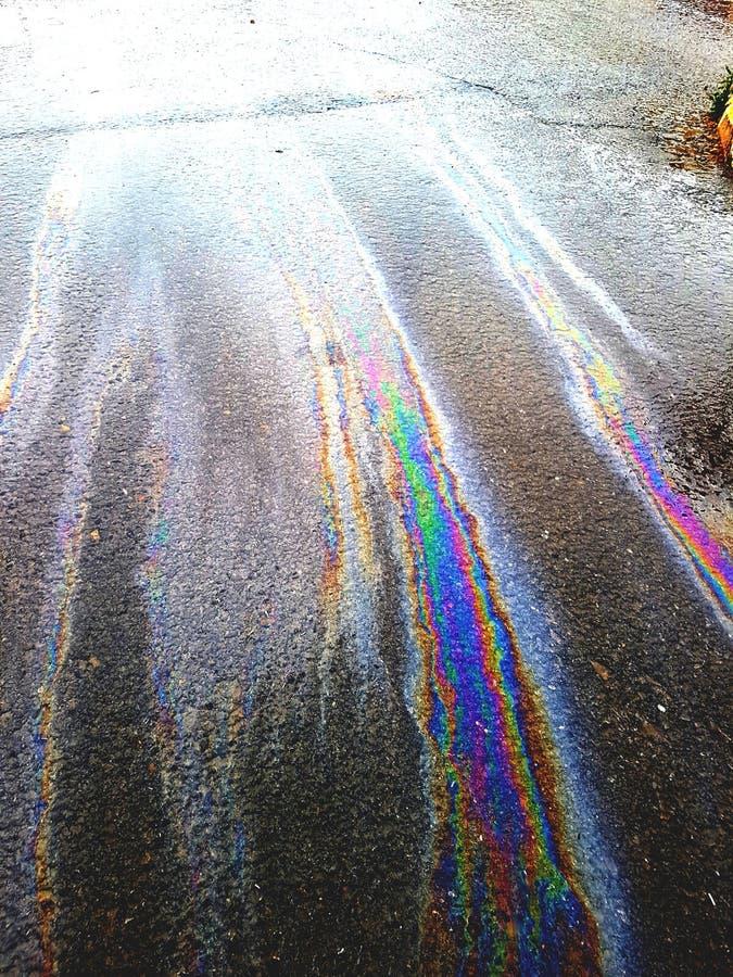 Stort härligt gå för regnbågar som är färgglat arkivfoton
