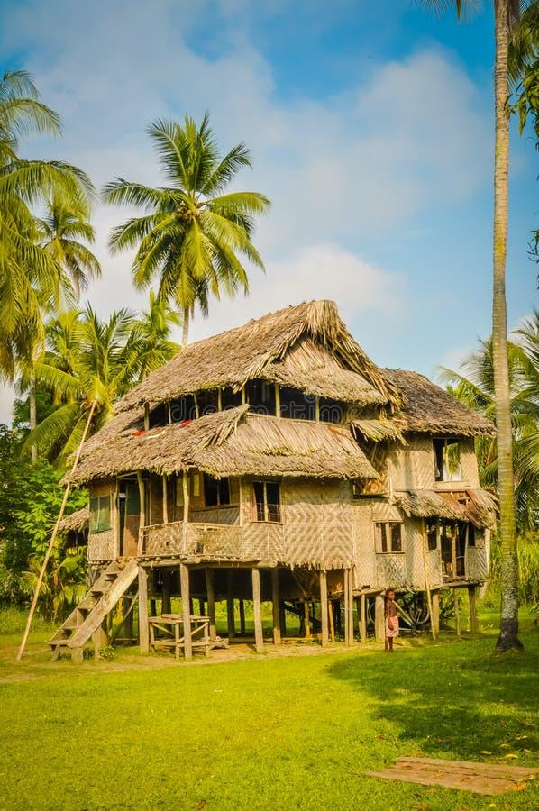 Stort hus i Avatip royaltyfria foton