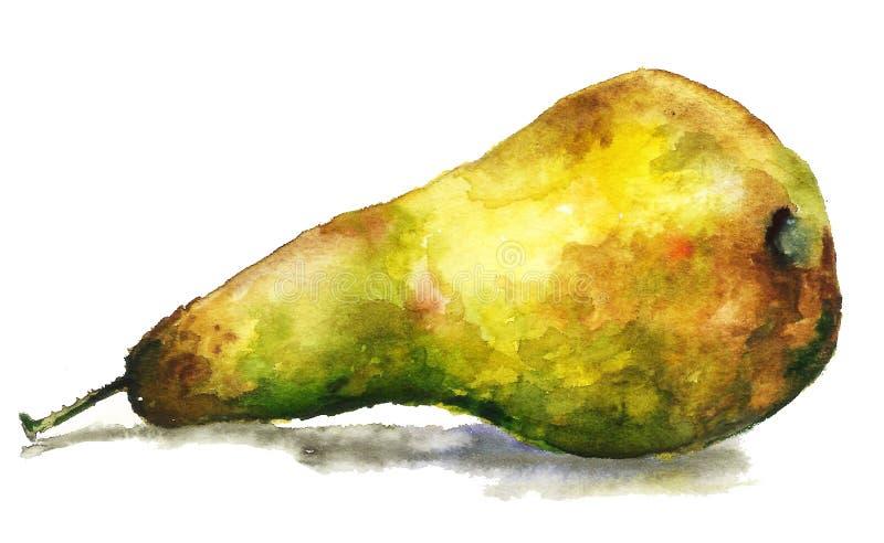 Stort, läckert saftigt gult päron, hand dragen vattenfärgmålning på vit bakgrund, korrekt mat, illustrationvattenfärg royaltyfri illustrationer