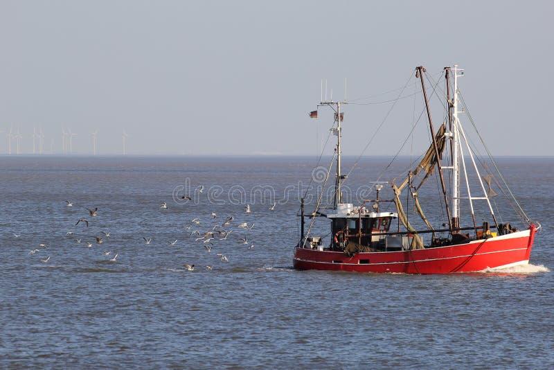 Stort lås av fisken i träl fotografering för bildbyråer