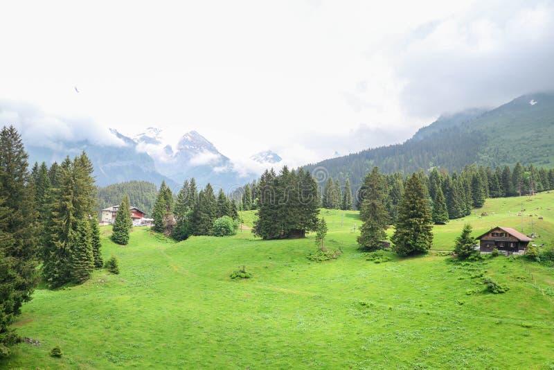 Stort landskap av det Titlis berget, Schweiz royaltyfri foto