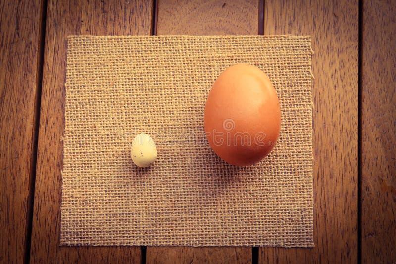 Stort och ett litet ägg arkivbild