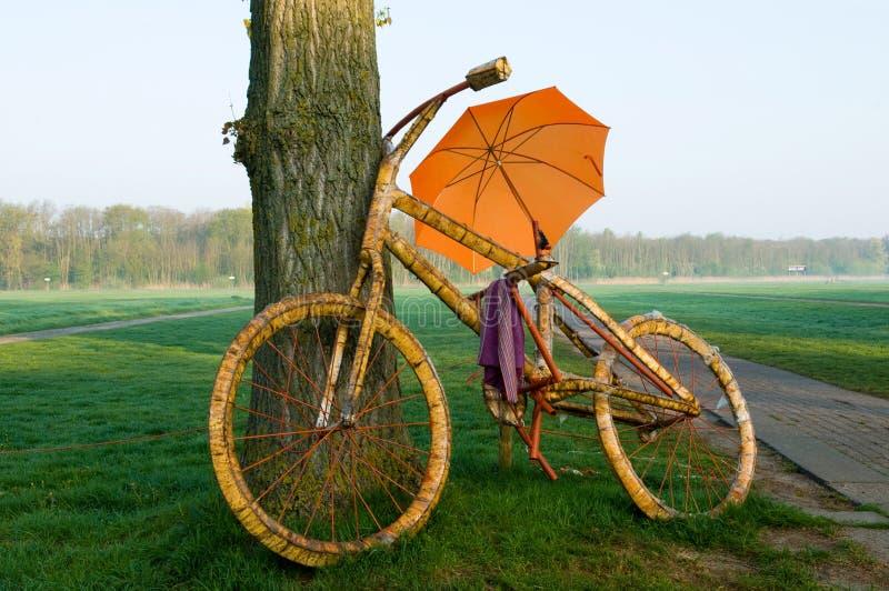 stort paraply för cykel royaltyfri bild