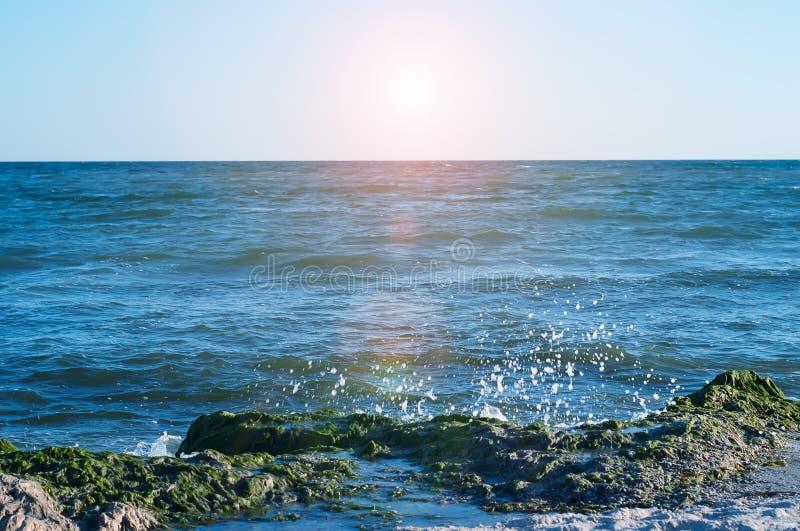 Download Stort plaska för våg fotografering för bildbyråer. Bild av natur - 76702227
