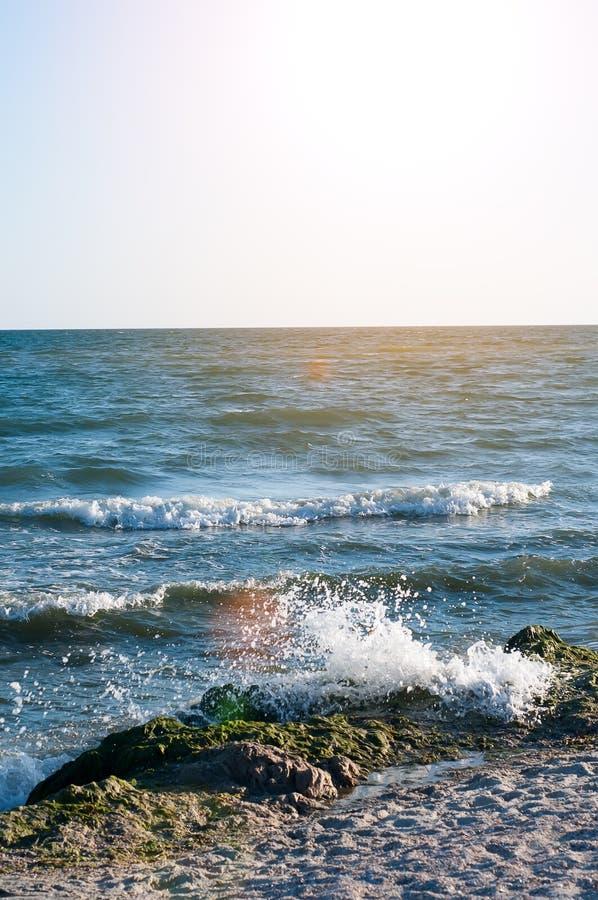 Download Stort plaska för våg fotografering för bildbyråer. Bild av green - 76702263