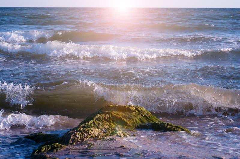 Download Stort plaska för våg fotografering för bildbyråer. Bild av krascha - 76702307