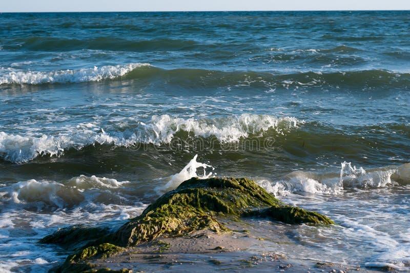 Download Stort plaska för våg arkivfoto. Bild av kust, form, färg - 76702346