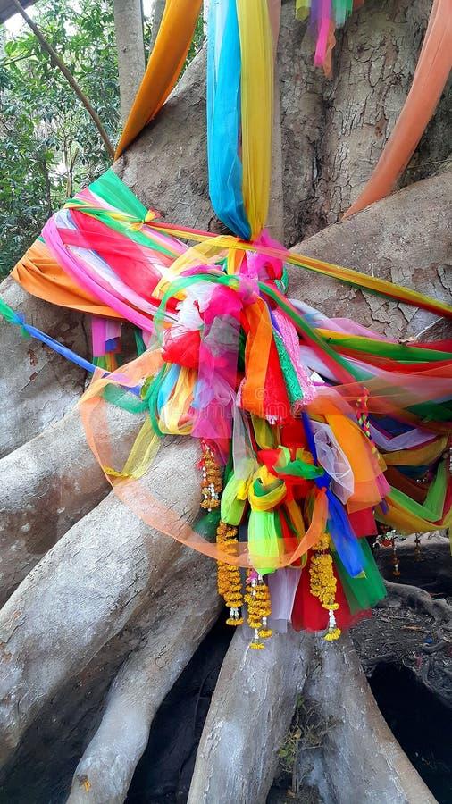 Stort träd som täckas av pulver och binds med flerfärgade tyger, tro av thai folk arkivbild