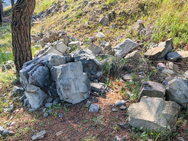 Stort vaggar, förberedande stenar bredvid en sörja på ett grönt gräs nära vägen Slut som skjutas upp royaltyfri fotografi