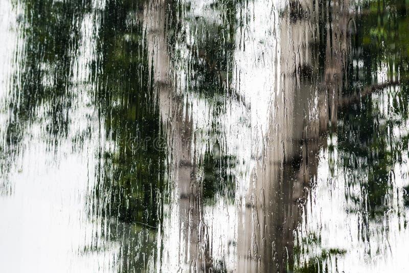 Stortbui die het venster behandelen tijdens een onweer; vage boomvorm zichtbaar op de achtergrond; abstracte achtergrond royalty-vrije stock afbeeldingen