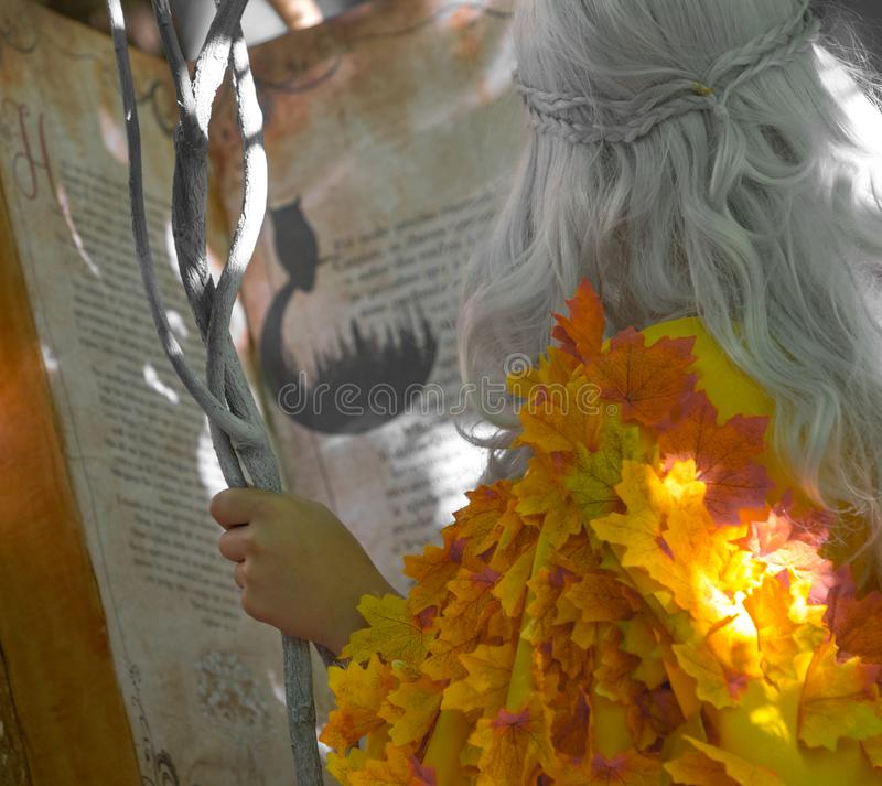 Storyteller Wizard closeup, during an outdoor theater acting for kids. Santa Maria da Feira, Portugal stock image