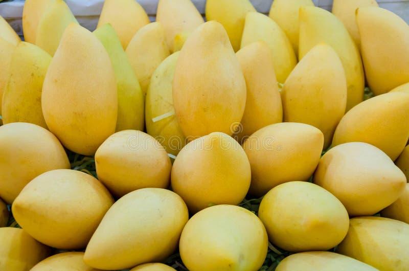 Stos świeży Barracuda mango na sprzedażach w Tajlandia rynku otwartym obraz stock