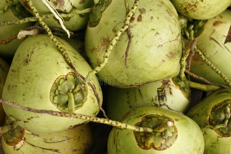Stos świezi zieleni koks dla sprzedaży przy rynkiem w Tajlandia obrazy stock