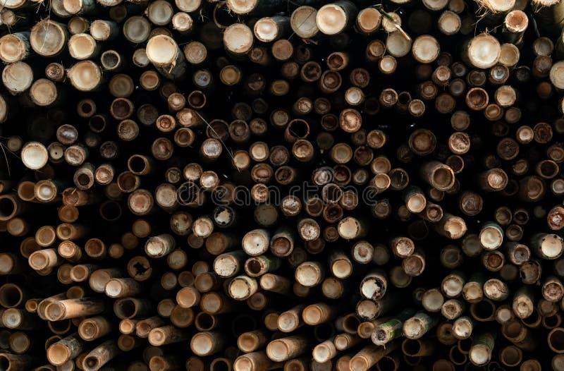 Stos bambusowy s?up Sterta round szalunku bele Wielki wsad drewniane bele dla przemys?owej skali lub produkcji magazyn zdjęcie stock