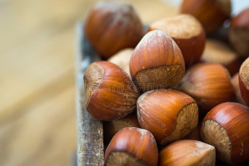 Stos cali hazelnuts w drewna pudełku na ogródu stole, zamyka up, wibrujący kolor, odgórnego widoku widok, wygodna jesieni atmosfe zdjęcia stock