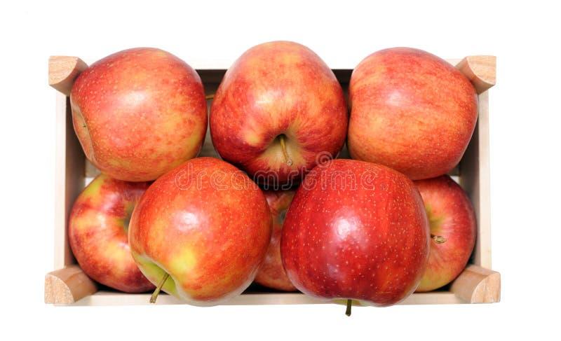 Stos jonagold jabłka zdjęcie royalty free