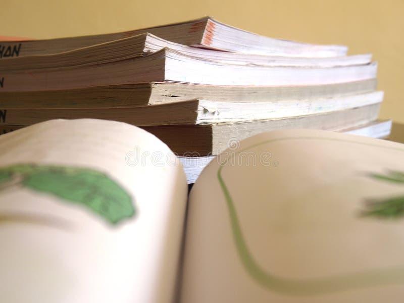Stos książki zdjęcie stock