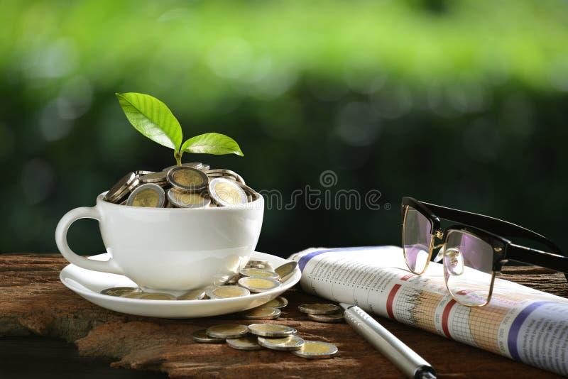 Stos monety i młoda roślina na wierzchołku w filiżance z gazetami i szkłami pokazuje pojęcie biznes obraz royalty free