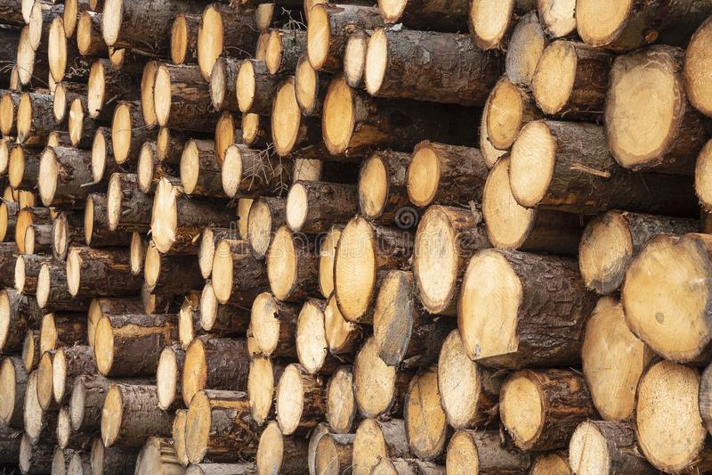 Stos niedawno ciący szalunku drewno zdjęcia royalty free
