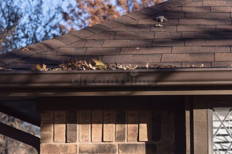 Stos wysuszeni liście na podeszczowej rynnie mieszkaniowy dom w Teksas obrazy stock