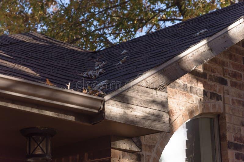 Stos wysuszeni liście na podeszczowej rynnie mieszkaniowy dom w Teksas zdjęcia royalty free