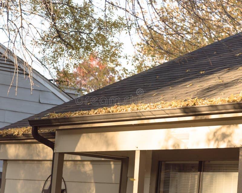 Stos wysuszeni liście na podeszczowej rynnie mieszkaniowy dom w Teksas obraz royalty free