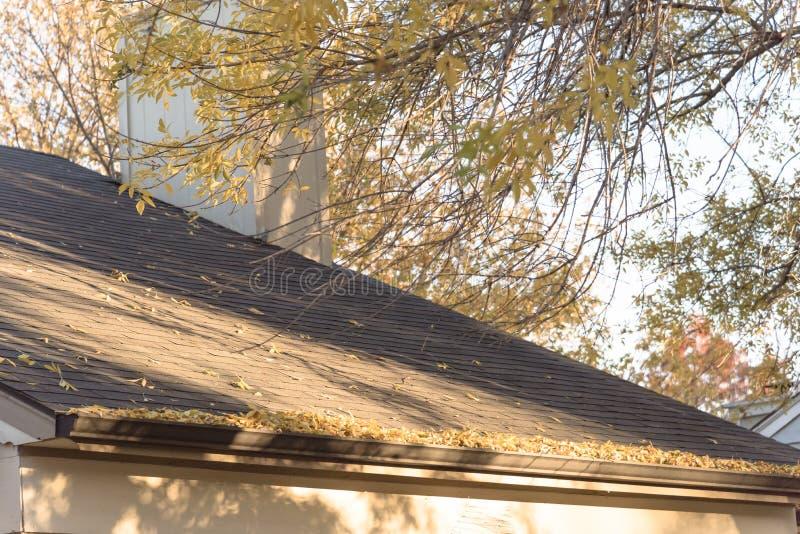 Stos wysuszeni liście na podeszczowej rynnie mieszkaniowy dom w Teksas obraz stock