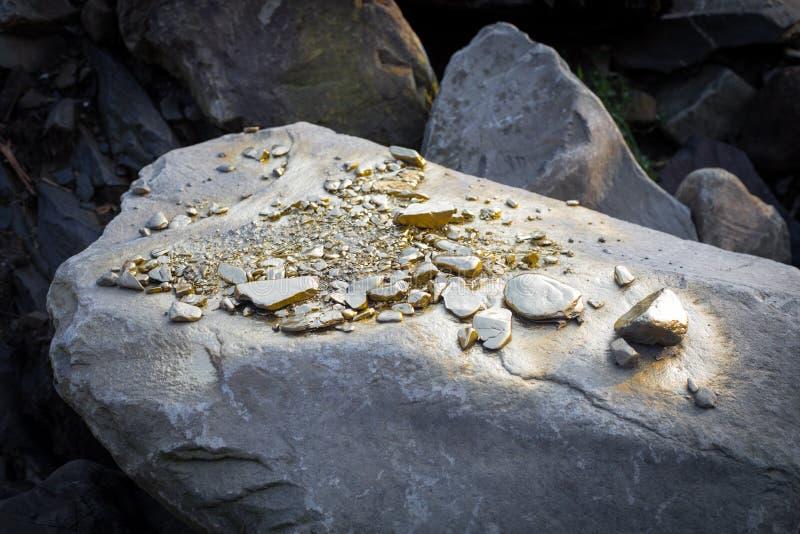 Stos Złocistej bryłki adra na dużym rzeka kamieniu, struktura złota zdjęcie royalty free