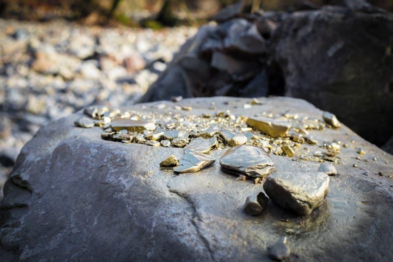 Stos Złocistej bryłki adra na dużym rzeka kamieniu, struktura złota zdjęcia royalty free