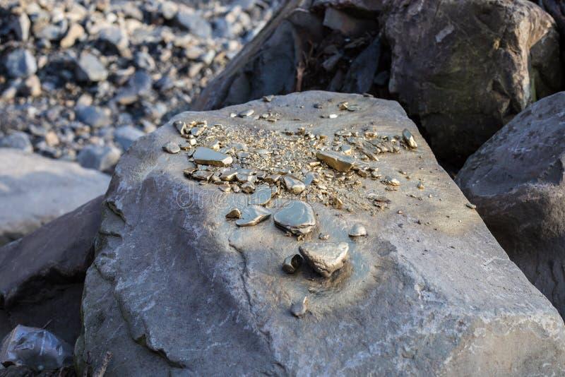 Stos Złocistej bryłki adra na dużym rzeka kamieniu, struktura złota zdjęcie stock