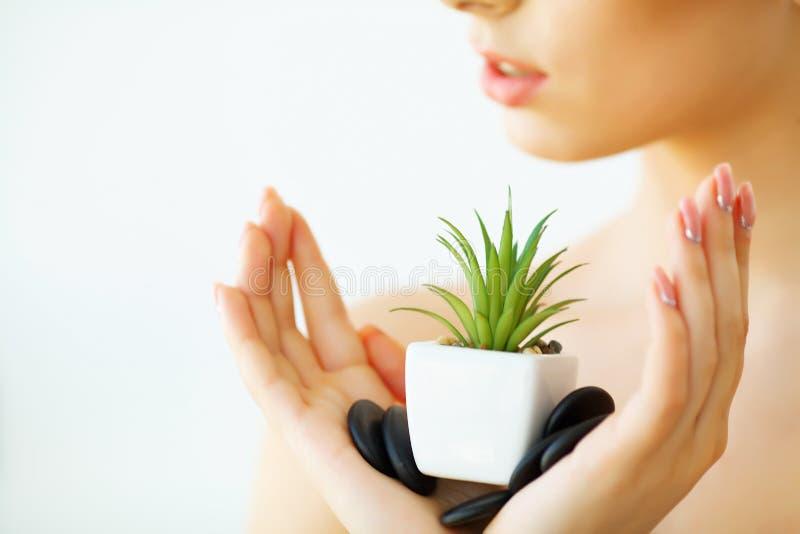 stosowanie opieki skóry przejrzystego lakier Kobieta z Jasną skóry mienia zieleni aloesu Vera rośliną zdjęcia royalty free