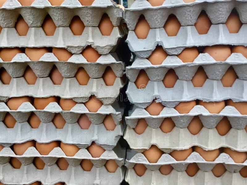 Stosy jajka w kartonach zdjęcia royalty free