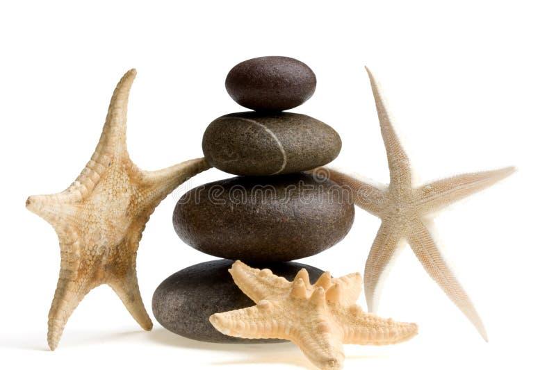 Stoun and shell royalty free stock image