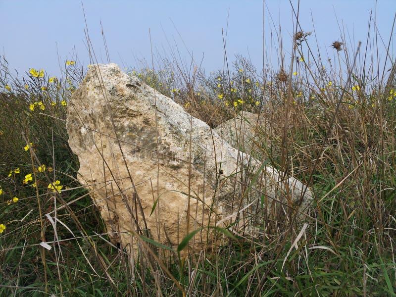 Stoune en bloem stock afbeelding