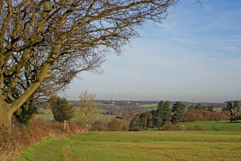 Stour Valley, Reino Unido imagens de stock