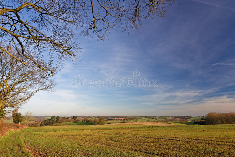 Stour Valley, Reino Unido, no inverno fotos de stock royalty free