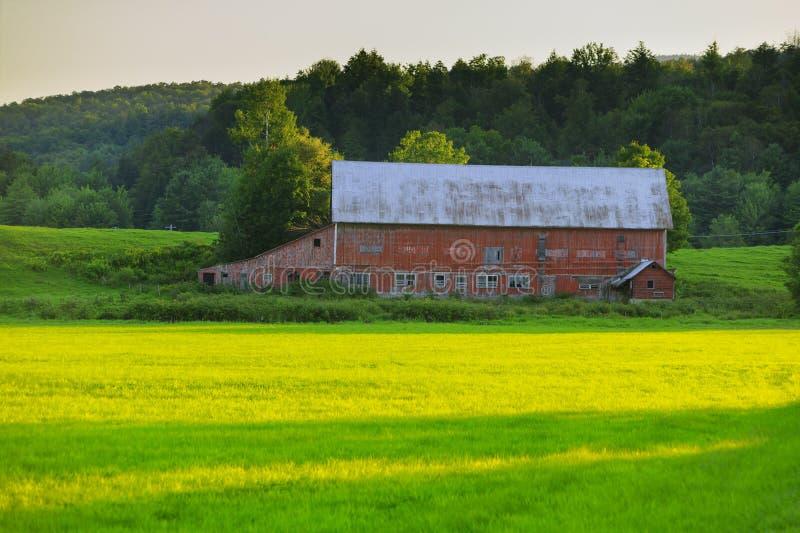Stowe VT的,美国老被风化的谷仓 免版税图库摄影