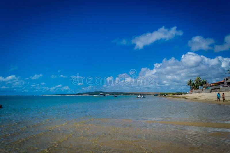 Stränder av Brasilien - Praia gör Frances, SaoMiguel DOS Milagres, Alagoas royaltyfria foton