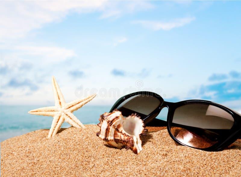Stränder sand, sol royaltyfri fotografi