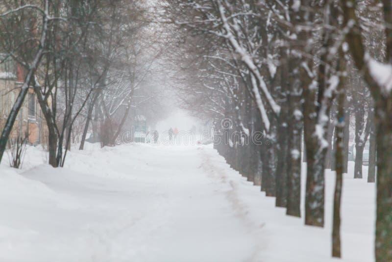Sträng snöstorm som hårt blåser i den Zakharova gatan royaltyfri foto