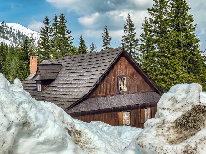 sträng vinter arkivbild