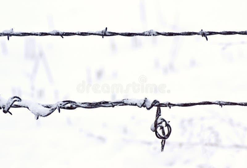 Stränge des Stacheldraht-Zauns im Schnee stockbilder