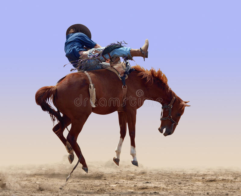 Sträubendes Rodeo-Pferd lizenzfreies stockbild
