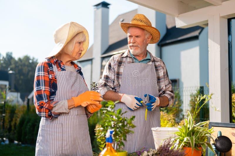 Strävsamma par som tar omsorg av plan och blommor som arbetar i trädgården royaltyfria bilder